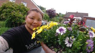 วิธีหารายได้เสริม รับจ้างปลูกดอกไม้ ที่เมืองนอก