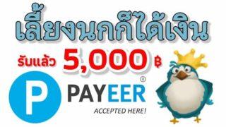 สอนหาเงินออนไลน์ เลี้ยงนกก็ได้เงิน 5000 บาท